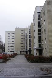 img_9852